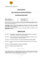 COMPTE-RENDU – Séance du 20.02.2021